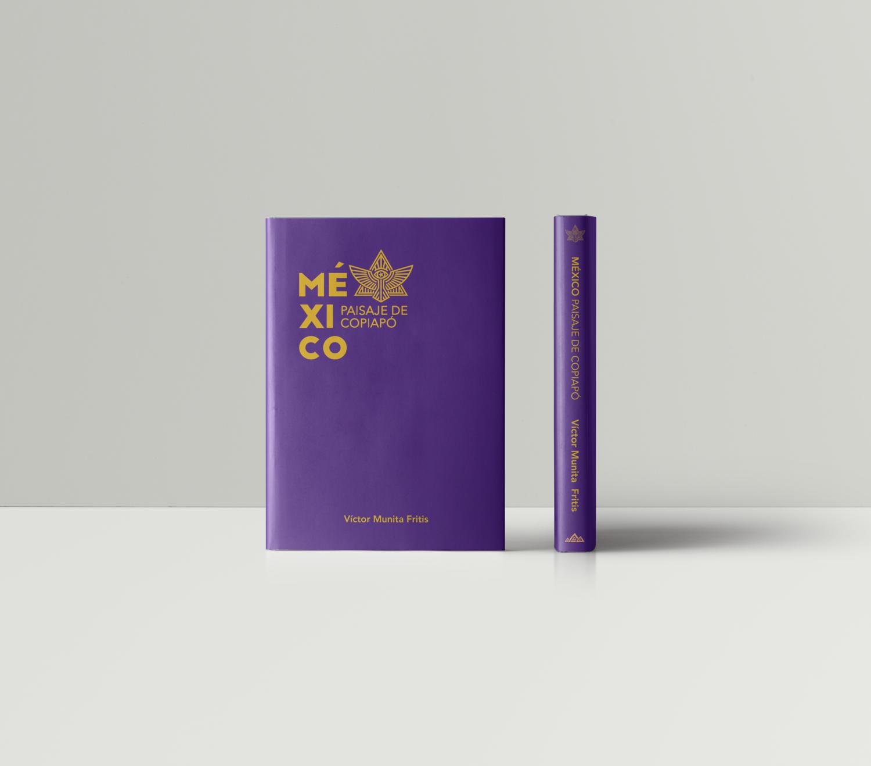 México Paisaje de Copiapó